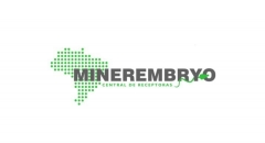Minerembryo
